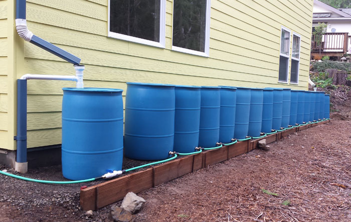 بشکه های جمع آوری کننده آب باران
