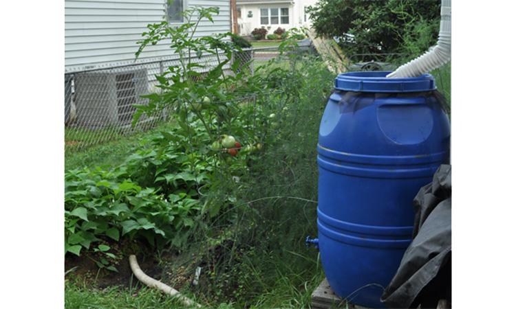 ذخیره آب باران برای کشائرزی