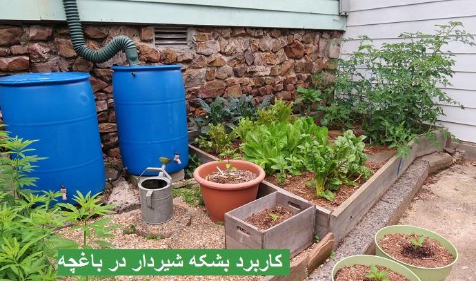 کاربرد بشکه شیردار در باغچه